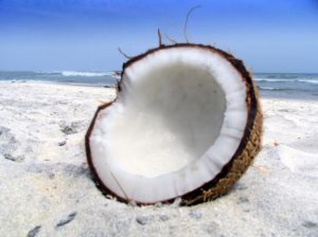 砂糖を混ぜても◎!?夏に最適「ココナッツオイル」美容法5つ