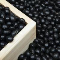 食べる美容液!ごまの栄養たっぷり「タヒニ」のレシピ