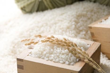 専門家直伝!「暑さ・湿気からお米を守る」方法&復活術まとめ