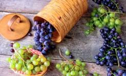 ダイエットは赤or緑?成分別「キレイになる」ブドウの食べ方