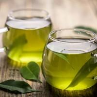 季節の変わり目に!「免疫バランスを整える」お茶3選