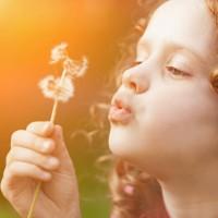 花粉症の症状が和らぐ?春を健やかに過ごす食事のコツ