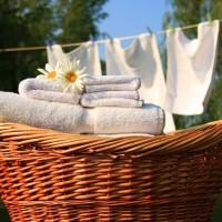 「部屋干し」のにおい対策に◎汚れすっきり!洗濯機の掃除術