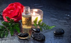 21410768 - camellias, oil, black stones, fern and candle - closeup