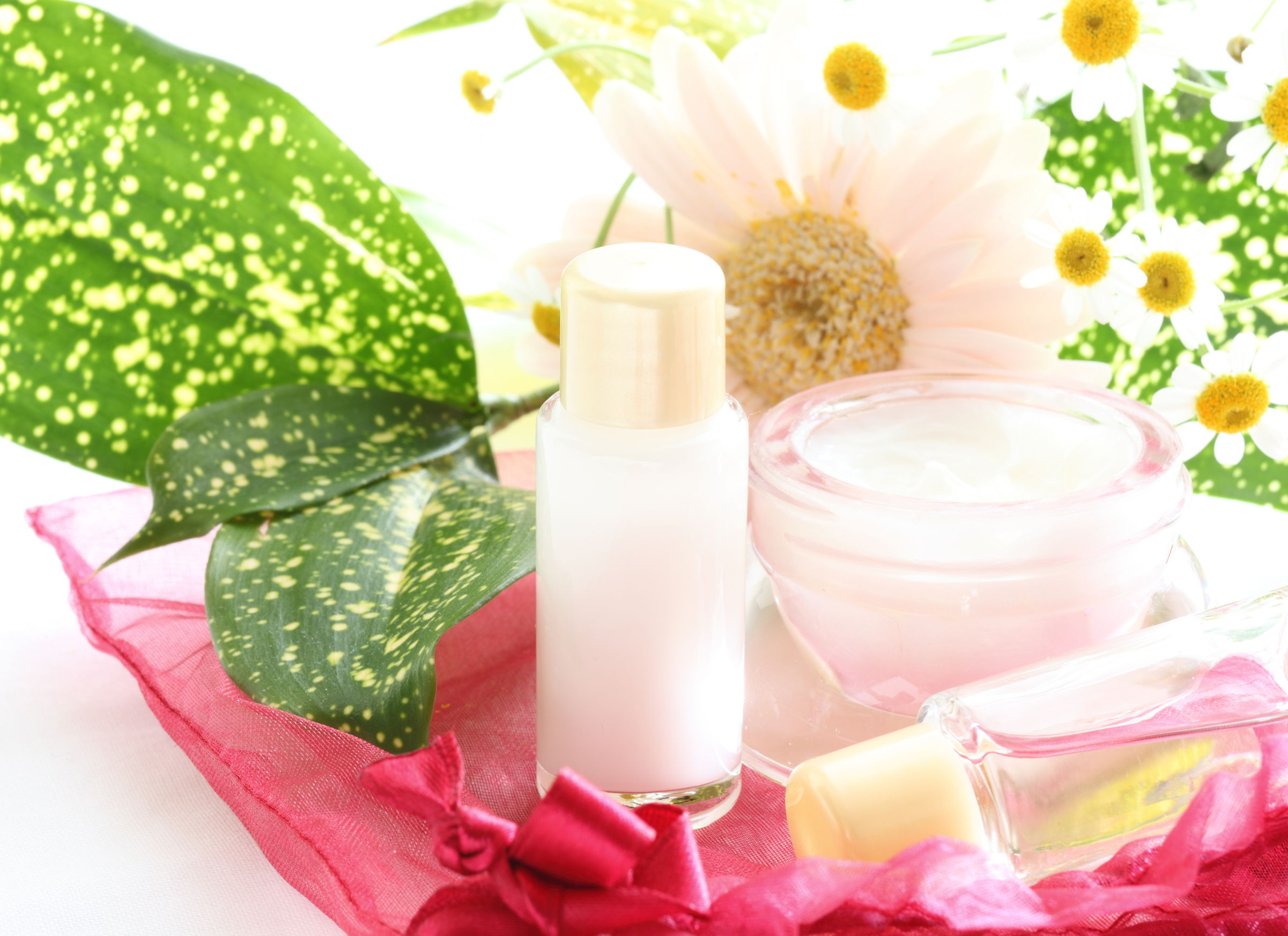 46282073 - skin care cosmetic and daisy for beauty image