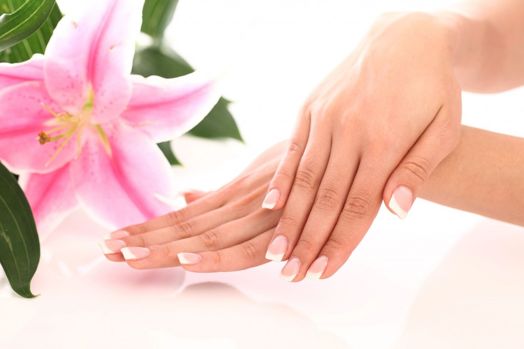 14812587 - beautiful woman hands and lily flower over white background