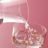 老化予防に◎!ビタミン豊富な「健康酒レシピ」3選