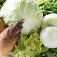 春の不調に!バリア機能アップに◎な「春野菜」5つ