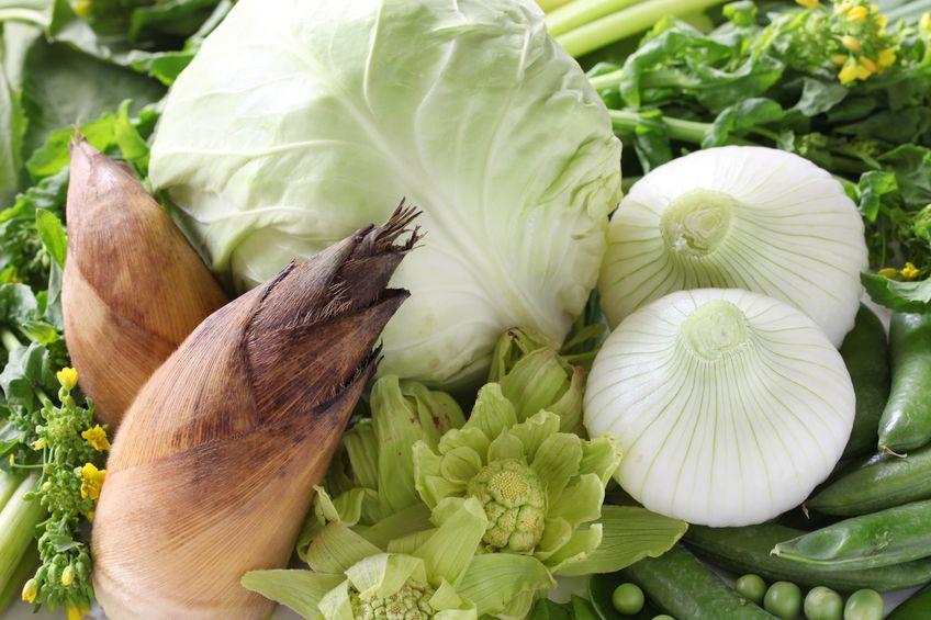18861239 - japanese spring vegetables