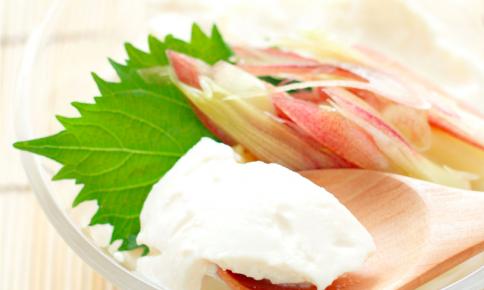 ハンバーグや仏料理にも◎味を引き立てる「みょうが」レシピ