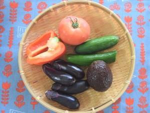 できあがったぬか床に、好きな野菜を漬けましょう。茄子、きゅうり、トマトなどの一般的な夏野菜はどれもぬか漬けにぴったり。