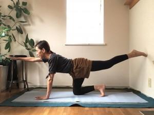 片脚を後ろに伸ばし、その反対側の腕を前方に伸ばしてバランスをキープ。腹筋と背筋を意識します。