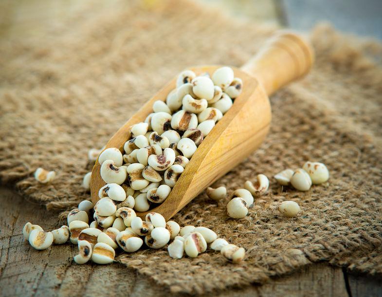 ヨクイニンは美肌を目指すならマストな雑穀です
