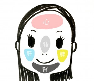 足や耳と同じように、顔にも反射区がある