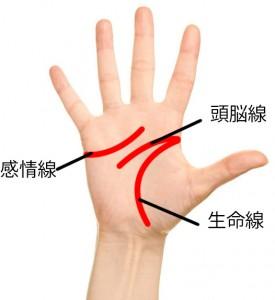 【手相占い】開運したい人は注目!手相の主要3大線(生命線、頭脳線、感情線)