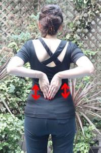 両手を合わせたら、背骨に沿わせ肩甲骨間に滑らせる。肩甲骨下部分を手で10回さする。