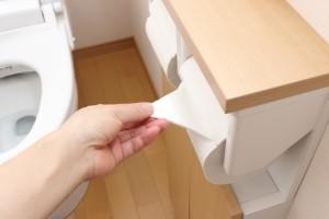 総務省統計局の調査では、水洗トイレのある住宅の割合(水洗化率)は90.7%とされ、その中でも洋式トイレ保有率は89.6%、今や日本では9割近くが洋式トイレです
