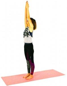 つま先を正面に向け、お腹を腰に引きよせ姿勢を整え、両手を天井方向に伸ばし、手のひらを合わせます