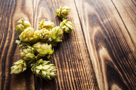 冬太り解消に◎ビール以外にも楽しめる「ホップ」レシピ3選