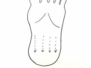 大腸の反射区は、足の裏の半分から下を押してかかとの方へ流しましょう