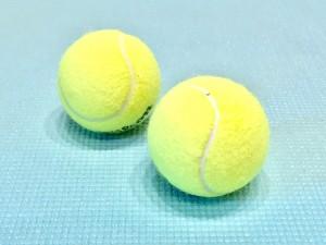 用意するものは「テニスボール」のみ!