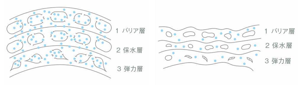 画像左:ふくらんでいる肌のイメージ画像右:しぼんでいる肌のイメージ