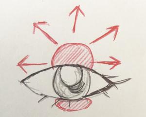 最初に黒目の上に濃いアイシャドウを乗せたら、画像の矢印のように放射状にぼかしてあげましょう