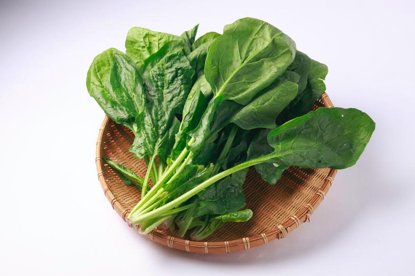 身体を「冷やす」冬野菜 (2)ほうれん草