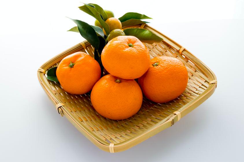 身体を整える!「季節の変わり目」に食べたいフルーツ3つ (2)ミカン