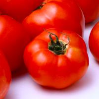 トマトは加熱で美肌力UP!?リコピンの吸収を良くする食べ方