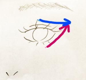 写真の赤い矢印のように少し引き上げる感じで斜め上にいれ、青い矢印は赤い矢印と交差させるように入れます