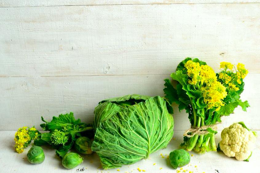 「旬の食材」で体調万全!春に嬉しい栄養が豊富な野菜4つ