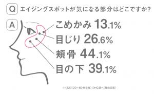 エイジングスポット_調査