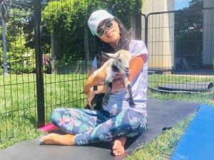 「goat yoga」は、アニマルセラピー