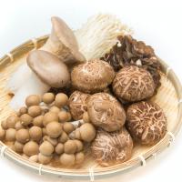 最強のヤセ菌食材!ヤセ体質に近づく旬のキノコの食べ方