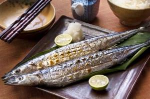 キレイをつくる!タンパク質食材3つ (1)巡りのいい身体づくりなら「青魚」