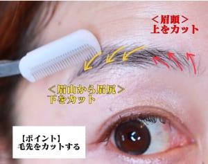 細眉にカットする際に切りすぎてしまうと、顔がキツく見えてしまいます。カットする前に、スクリューブラシで毛流れを整えると切りすぎを防げます