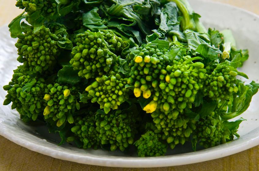 菜の花は台所のドクター!?菜の花が免疫力強化を助ける理由