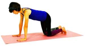 肩の真下に手首がくるように手のひらを床につけ、両ひざも床につけます