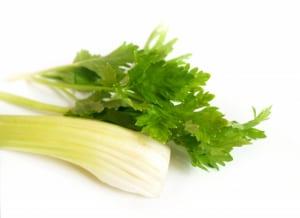 旬を味わう!美肌づくりに役立つ春野菜3つ (3)セロリ