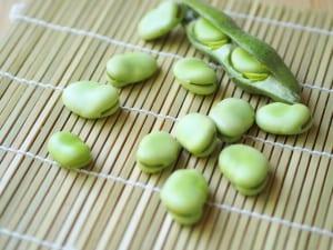 旬を味わう!美肌づくりに役立つ春野菜3つ (1)ソラマメ