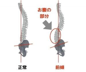 骨盤は背骨と直接接している骨であるため、骨盤が傾くと背骨のラインに大きな影響を及ぼす場合があります