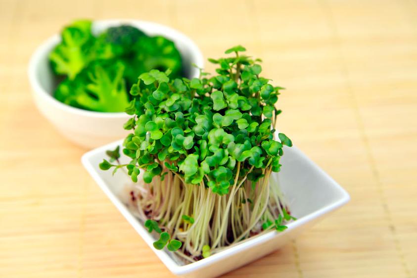 活性酸素で便秘に!?毎日食べたいブロッコリースプラウト