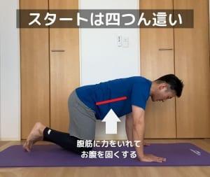 四つん這いの姿勢になり、腹筋に力を入れて固くします