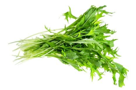 ビタミン、ミネラル豊富!ダイエット中に食べたい「水菜」