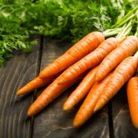冷えや便秘解消に!乾燥対策や免疫力UPにも役立つ旬の根菜類