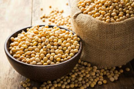 朝大豆で暴飲暴食予防!ヤセ体質&丈夫な骨に導く大豆の魅力
