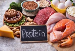 高タンパク質の食事