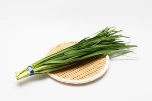 「ニラ」の作り置きレシピで、寒さに強い身体作りをサポート