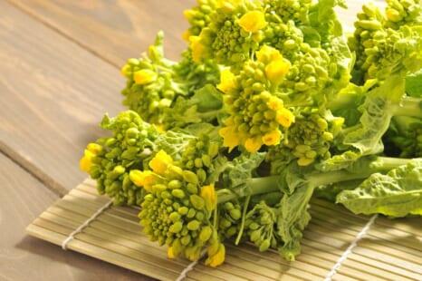 春のお悩みに!菜の花の栄養効果を高める組み合わせアイデア